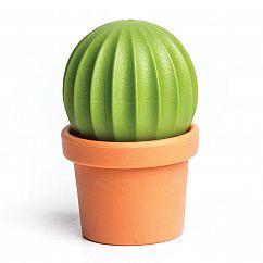 Salz- und Pfefferstreuer Cactus